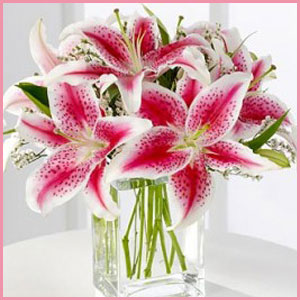 Lilies-for-Mom